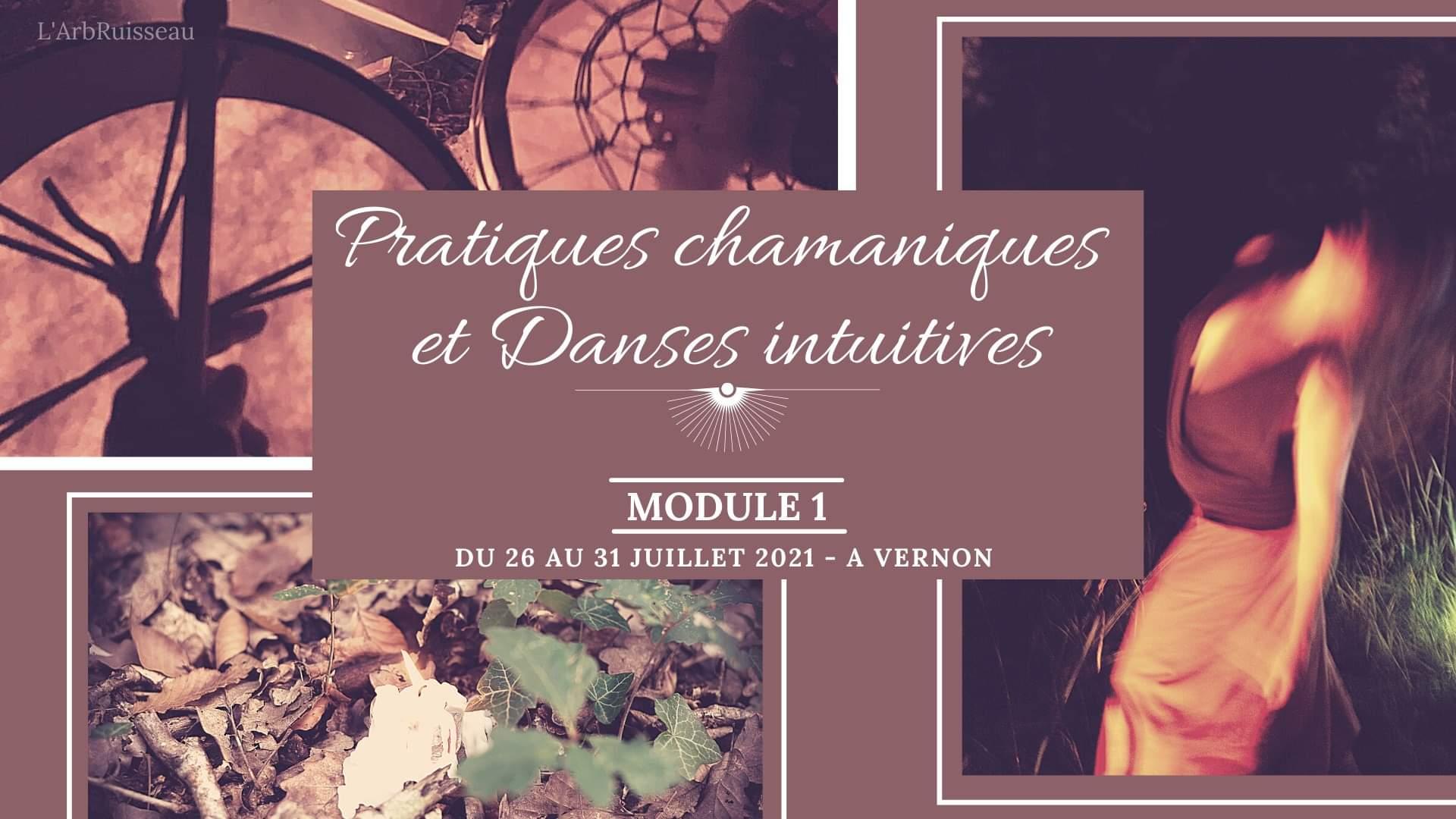 Pratiques Chamaniques et Danses Intuitives - Module 1