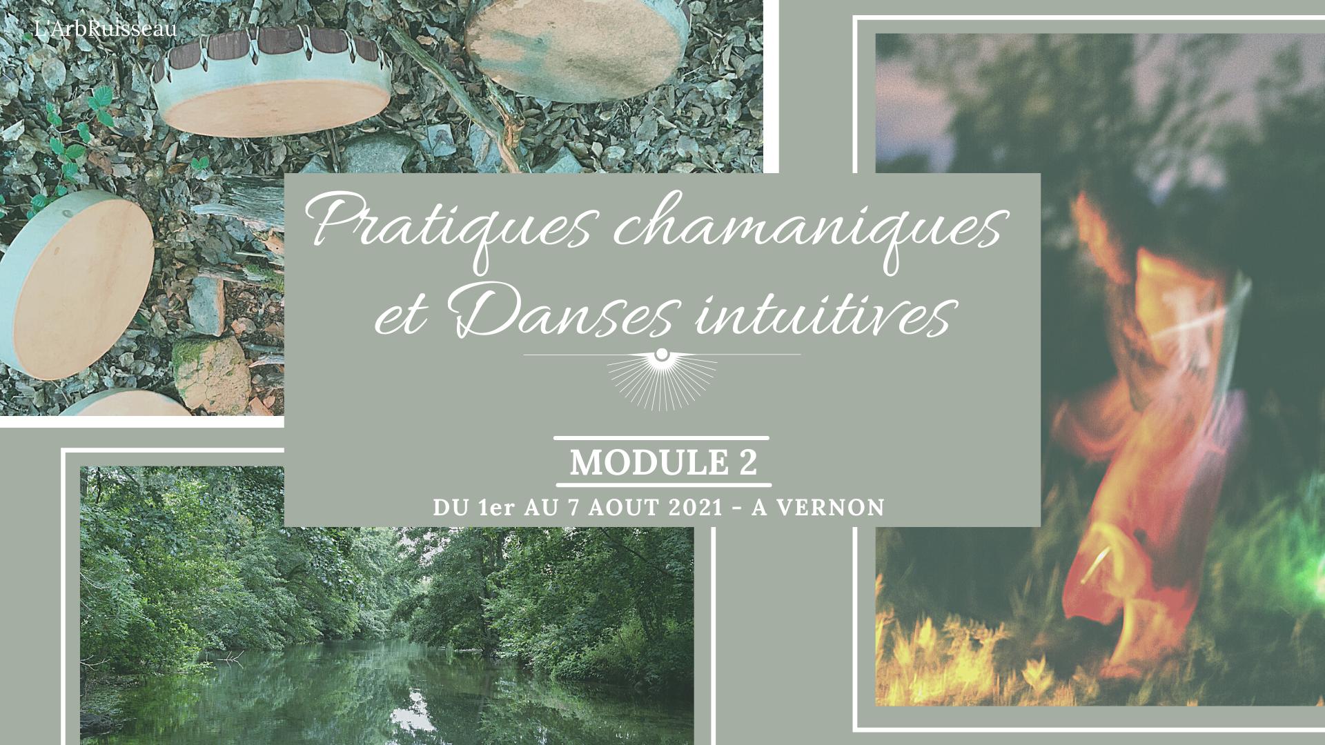 Pratiques Chamaniques et Danses Intuitives - Module 2